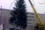Почему на площади Опарина нет новогодней ели?
