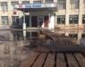 Нововятская школа благодаря огромной луже прославилась в Интернете
