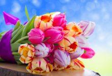 Нововятских женщин поздравят с праздником 5 марта