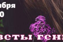 ДК «Россия» приглашает на театрализованный концерт «Цветы Гения»