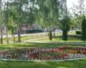 В Нововятском районе любителей цветочного дизайна приглашают на конкурс